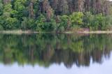 Brunnsviken5.jpg