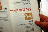 Pessach (Passover) 2008