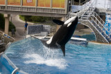 Sea World_102.jpg