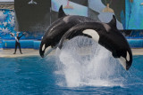 Sea World_148.jpg