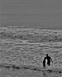 acap  beach 001.jpg