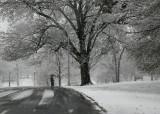 April Snow_48.jpg
