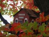 fall nh 2003_029.jpg
