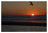 Sunrise at Isle of palms South Carolina