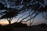 Jekyll sunrise_02.jpg