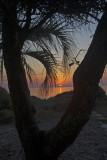 Jekyll sunrise_11.jpg