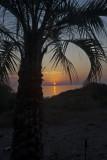 Jekyll sunrise_12.jpg