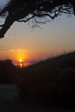 Jekyll sunrise_20.jpg