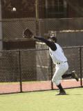 Baseball 2007 and 2008