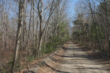The Old Railroad Bed in March 2008