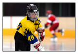 Ice Hockey - Lions L'ke