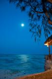 Zanzibar Moon