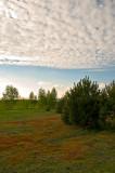 Funny Sky