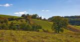 Mild Hills Near Obrocz