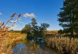 Wieprz River
