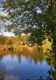 Pond In Zwierzyniec
