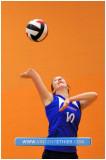 Volleyball Fém. AAA