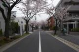 Street in Yōga Tokyo @f5.6 D700