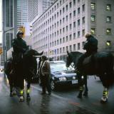 Mounted cops