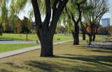 Park Reala