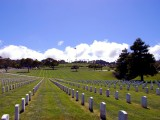 Golden Gate US Nationial Cemetary 3