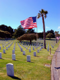 Golden Gate US Nationial Cemetary 7