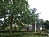 Hilversum, het apost gen 22, 2008.jpg