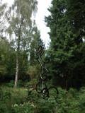 Hilversum, vrijz gel gem beeld, 2008.jpg
