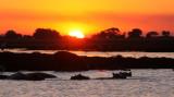 HIPPO - SUNSET CRUISE ON THE CHOBE - CHOBE NATIONAL PARK BOTSWANA (40).JPG
