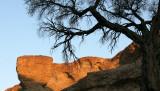 NAMIBIA - SESRIEM CANYON NAMIB NAUKLUFT NATIONAL PARK (13).JPG