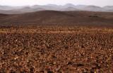 NAMIBIA - SKELETON COAST NATIONAL PARK - SCENERY (29).JPG