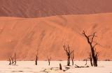 SOSSUSVLEI, NAMIB NAUKLUFT NATIONAL PARK, NAMIBIA - DEAD VLEI (13).JPG