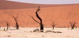 SOSSUSVLEI, NAMIB NAUKLUFT NATIONAL PARK, NAMIBIA - DEAD VLEI (16).JPG