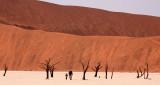 SOSSUSVLEI, NAMIB NAUKLUFT NATIONAL PARK, NAMIBIA - DEAD VLEI (48).JPG
