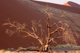 SOSSUSVLEI, NAMIB NAUKLUFT NATIONAL PARK, NAMIBIA - SESREIM VIEWS (9).JPG