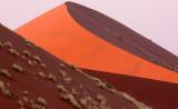 SOSSUSVLEI, NAMIB NAUKLUFT NATIONAL PARK, NAMIBIA - SUNRISE AT DUNE 45 (14).JPG