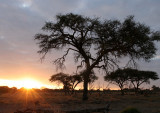 Landscapes of South Africa and Botswana