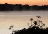 CHOBE NATIONAL PARK BOTSWANA - SUNRISE OVER THE CHOBE RIVER.JPG