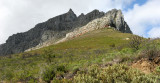 TABLE MOUNTAIN NATIONAL PARK - TABLE MOUNTAIN SOUTH AFRICA.JPG