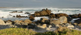 WEST COAST NATIONAL PARK SOUTH AFRICA - VIEWS (6).JPG