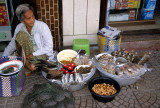 NAKHON - LADY SELLING BUGS AND TURTLES A.jpg