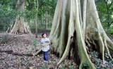 HUAI KHA KHAENG - FOREST TREK IN TO THE INTERIOR (6).JPG