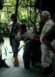 ECUADOR - AMAZONA - RAINFOREST INTERIOR - FLOODED FOREST WALK.jpg