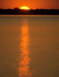 PANTANAL - SUNSET D.jpg