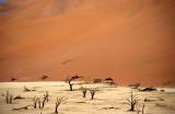 NAMIB DESERT 1.jpg