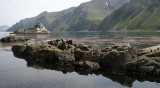 COMMANDER ISLANDS - MEDNY ISLAND  (25).jpg
