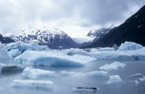 ALASKA - PORTAGE GLACIER A.jpg
