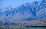 CALIFORNIA - SIERRA - EAST SIDE WITH ELK (2).jpg