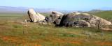 CARRIZO PLAIN NATIONAL MONUMENT - SELBY ROCKS - ROADTRIP 2010 (3).JPG