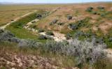 CARRIZO PLAIN NATIONAL MONUMENT CALIFORNIA - WALLACE CREEK SAN ANDREAS FAULT OVERLOOK (5).JPG